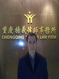律师咨询_杨毅